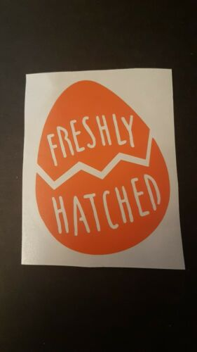 Details about  /Freshly hatched easter egg VINYL DECALS  stickers gift glass party diy mug