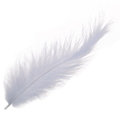 200 x Fire chicken feather Pointed tail velvet feathers 10-15cm white P8K1 KC