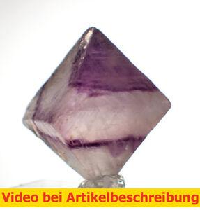 6537-polychromer-Fluorite-Gap-Rhombicuboctahedron-ca2-6cm-Fluorite-Octahedron-Diamond-Movie
