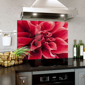 Trempé Verre Splashback Cuisine & Salle De Bain Panel Toute Taille Red Flower Macro Zoom 0382-afficher Le Titre D'origine