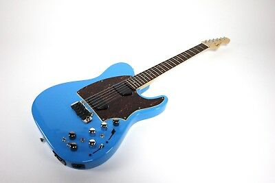 Moog Custom Shop Guitar with Midi Paul Vo Collector Limited Edition