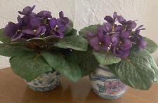African Violet flowers different colors 5 varieties plants home garden 50 seeds