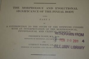 Pineal-Gland-Dr-Tilney-Occult-Anatomy-Medical-Yale-University-Textbook-1919-VTG