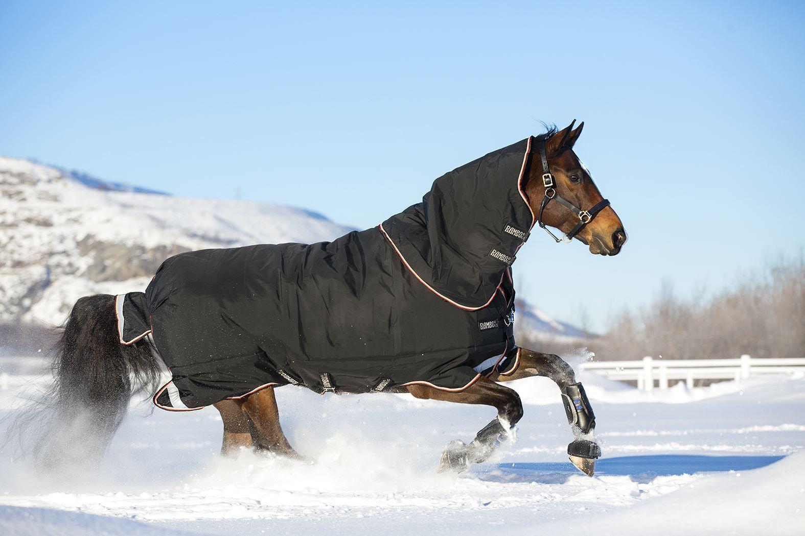 Horseware Ireland Rambo Supreme Turnout 420g AAAS93