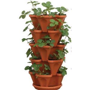 5 Pots Baskets Window Boxes Plant Strawberry Planter Pot Care2 Tier