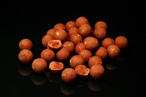 Dt Baits Pukka Fish mix Peach and Sour Cream carp fishing bait Boilies 5kg