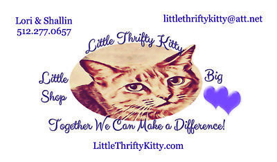 Little Thrifty Kitty