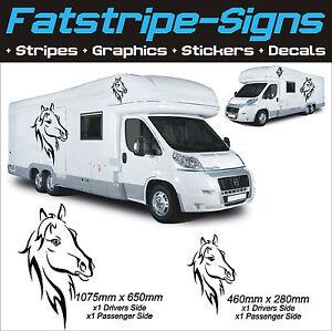 HORSE GRAPHICS MOTORHOME VINYL STICKERS DECALS CAMPER CAR VAN - Graphics for caravanscaravan stickers ebay