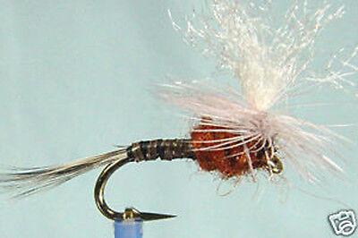 10 x Mouche de peche Sèche Peute H10//12//14//16 lot truite dry fly trout fishing