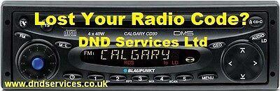 Código PIN de Radio Blaupunkt Bosch Decodificar Desbloqueo Alfa Romeo Fiat Ford Nissan Bmw
