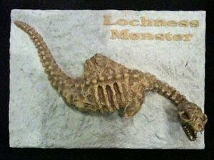 Lochness-Monster-Fossil-Sculpture-Very-Detailed
