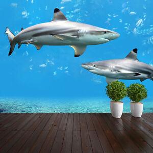 Haien unterwasser natur tapete wandkunst design wm025