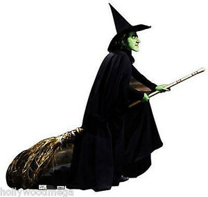 Image Is Loading New Life Size Cardboard Cutout Of The Wicked