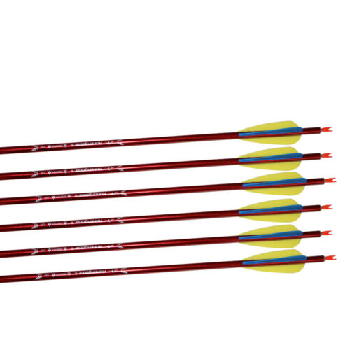 """31/"""" Archery Hunting Aluminum Arrows Compound Recurve Bow Longbow Shooting Target"""