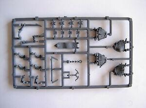 #148 Warhammer Aos Fantasy Elfes Noirs Torses Standards Pièces Bits Spares Gw-afficher Le Titre D'origine Ventes Pas ChèRes 50%
