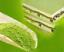 thumbnail 4 - Chinese 1000g Matcha Green Tea Powder 100% Natural Organic Slimming Weight Loss