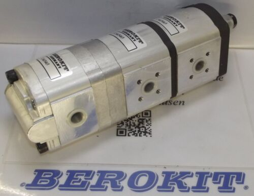 Fendt 307C 308C 309C 370GT,380GT Hydraulikpumpe alternativ für 0510665465