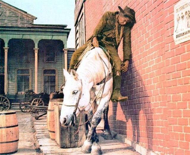 Image result for lee marvin and horse in cat ballou