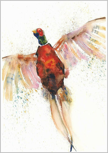 Limited PRINT of my FLYING PHEASANT original watercolour HELEN APRIL ROSE   435