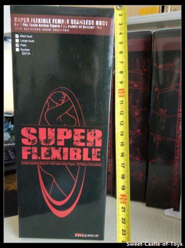 1//6 Phicen Flexible Steel Skeleton Seamless Pale Large Bust S10D Body TBLeague
