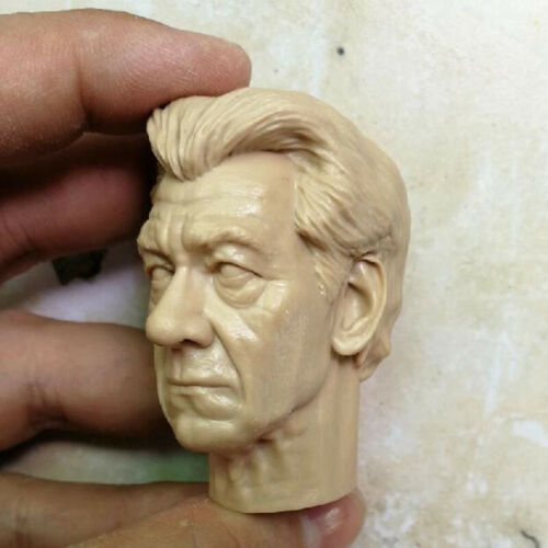 Blank Hot 1//6 Scale The X-Men The Elderly Magneto Head Sculpt Unpainted