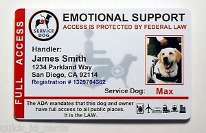 How To Register An Emotional Support Dog In Canada