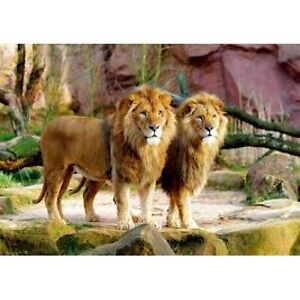 1500 TEILE PUZZLE, LIONS TREFL 26088