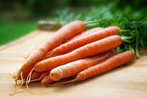 Quality Italian Local variety seeds Carrot Carota di Albenga