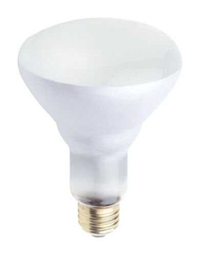 Westinghouse  65 watts BR30  Incandescent Bulb  650 lumens White  Spotlight