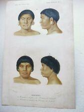 Gravure couleur 19° portrait :botocoudos:homme et femme vus de face et de profil