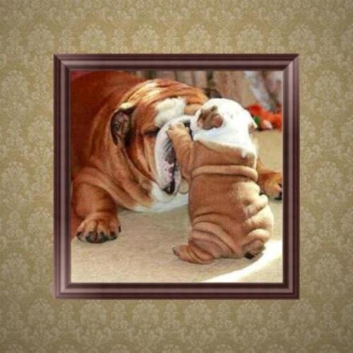 DIY Dog 5D Diamond Embroidery Painting Rhinestone Cross Stitch Home Decor Gifts