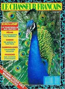 Avoir Un Esprit De Recherche Le Chasseur Francais N°1084 Juin 1987 : La Tourterelle Aux Pantes Design Professionnel