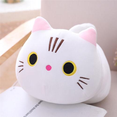 Cartoon plush toy cat pillow cute kitten doll doll doll girlfriend birthday gift