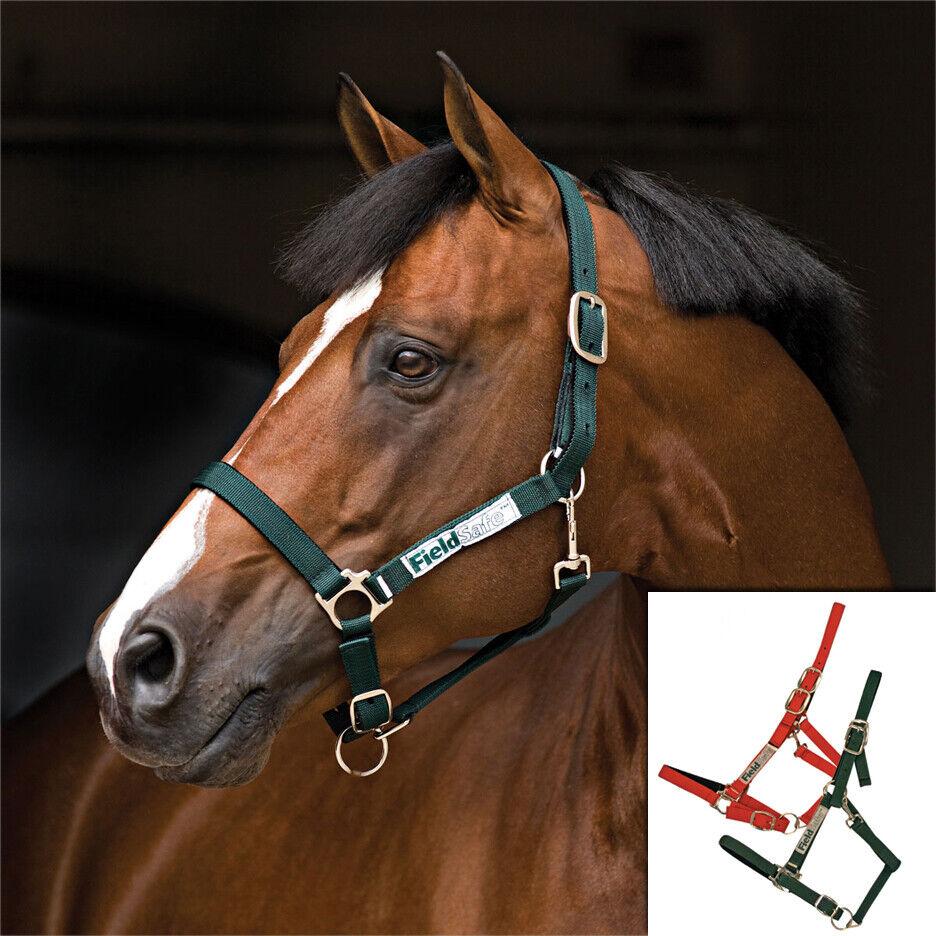 HORSEWARE AMIGO FIELD SAFE HEAD COLLAR SAFTEY HALTER HEADCOLLAR
