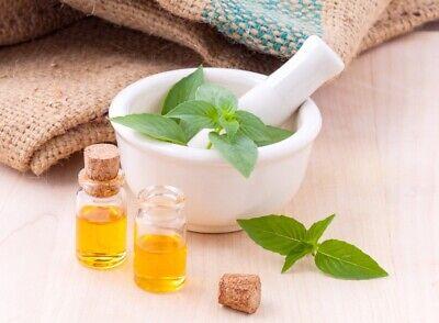 150//2400 Graines Basilic Citron Vert Lime Herbe Aromatique Inhabituel