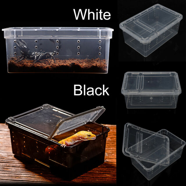 Transparent Plastic Box Insect Reptile Transport Breeding Live Food Feeding