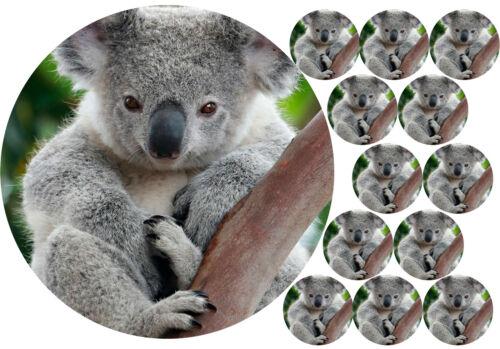 """7.5/"""" Cake Topper 12 Cupcakes Koala Personnelle Papier de riz 1162 Glaçage Fondant"""