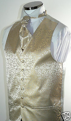 Champagne  Scroll  Men's/Boys' Wedding Waistcoat & Matching Cravat