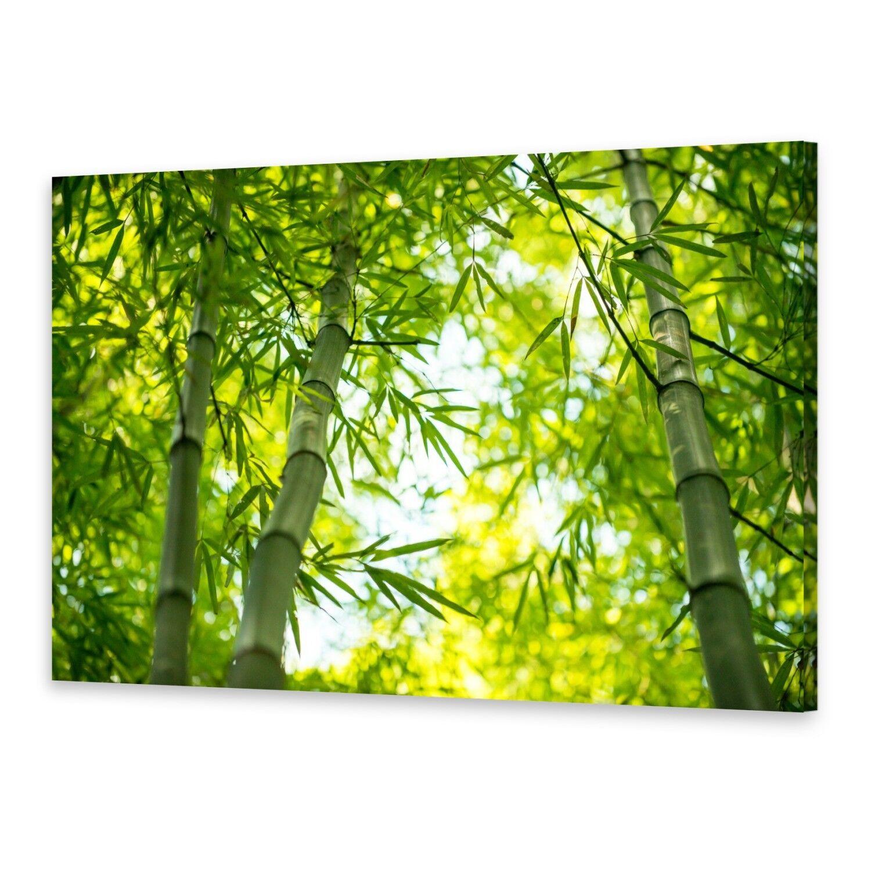 - Tela Immagini Immagine Parete stampa su canvas stampa d'arte ramo bambù