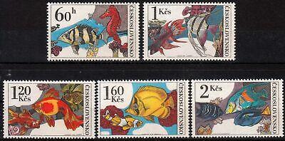 Tschechien & Tschechoslowakei 2260/64 ** Zierfische SchöN In Farbe Tschechoslowakei Minr