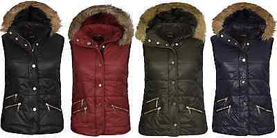 Snug Gilet Bodywarmer 8 10 12 14 16 Padded /& Hooded Warm Ladies NAVY Quilted