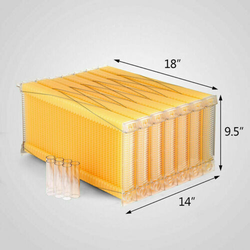 7x Auto Flow Honeycomb Beehive Wax Frames Bee Hive For Beehive Box Free Shipping