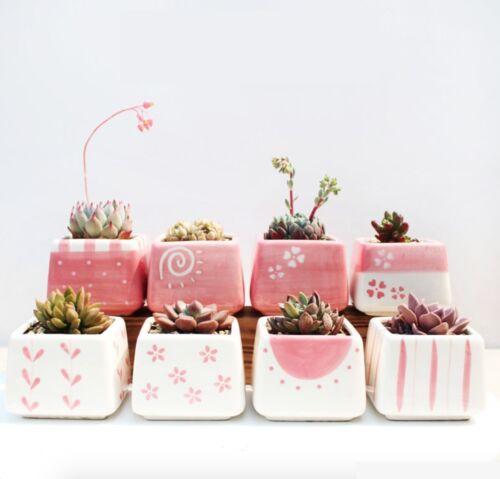 Lovely Pink Ceramic Succulent Planter Miniature Flower Pots Garden Planter Pot