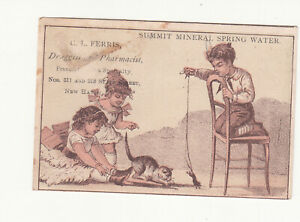 G L Ferris Druggist New Haven CT Summit Mineral Spring Water Mouse Card c1880s