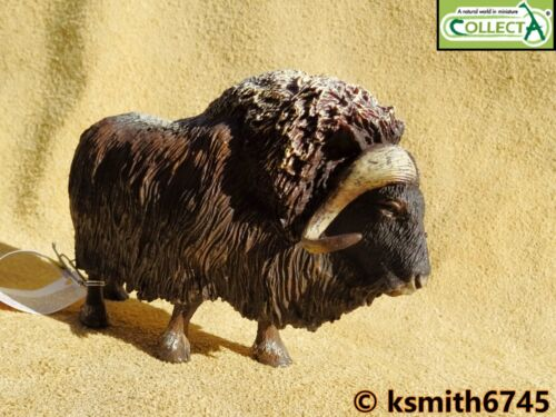 CollectA MUSK OX solid plastic toy wild zoo Arctic animal oxen NEW
