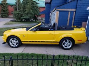 2006 Mustang Convertible  Pony Car