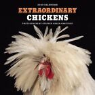Extraordinary Chickens 2016 Wall Calendar by Stephen Green-armytage