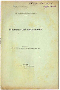 Estratto Il Pancreas Nei Morbi Infettivi Omaggio Francesco Franceschi Bicchierai