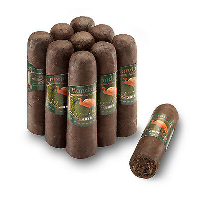 IBIS - Bundle -  Mini Robusto - 9 Zigarren - aus Honduras