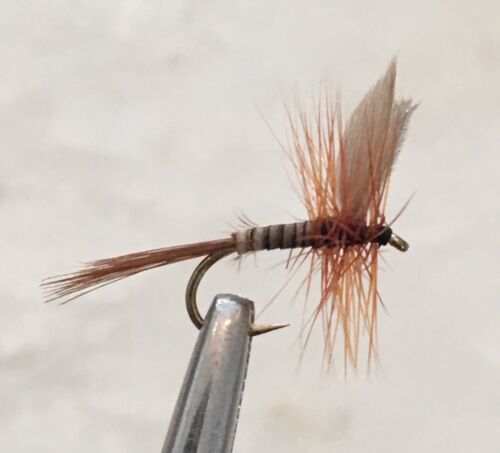 6 X FLIES SIZE #14 DRY FLY FISHING FLIES DAD/'S FAVOURITE